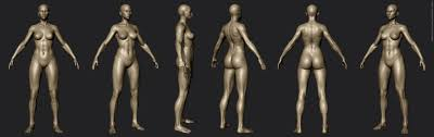 Female Body Reference For 3d Modelling Marcus Dublin Art Spot U2014 Polycount