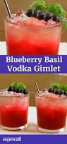 best 25 vodka gimlet recipe ideas on pinterest gimlet drink