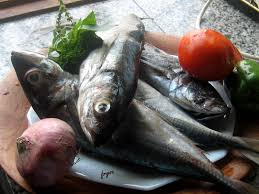 cuisiner le maquereau une recette le poisson maquereau et missolè le de fryou