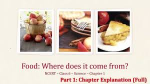 ncert class 6 science ch 1 food where does it come from