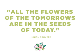 emoji quote pics flower quotes 12 calming thoughts on flowers reader u0027s digest