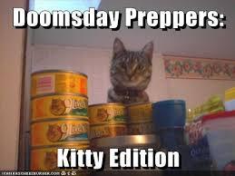 Doomsday Preppers Meme - doomsday prepper kitty edition the most adorable survivalist meme