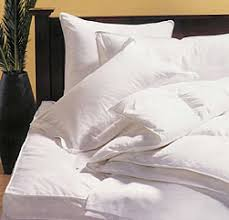 How To Wash Down Feather Comforter Clean U0026 Renovate Down Comforters Down Pillows Featherbeds U0026 Down