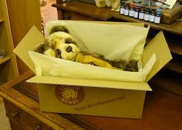 bears delivery free delivery of your teddy