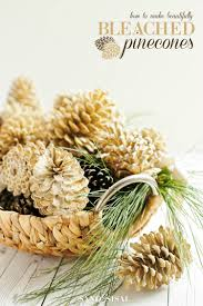 how to make beautifully bleached pinecones sand and sisal