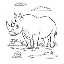 25 free printable wild animals coloring pages