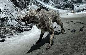 ice wolf elder scrolls fandom powered wikia