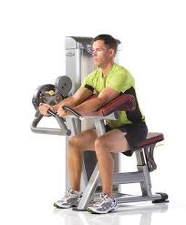Triceps Bench Dips Xzonegym Workout