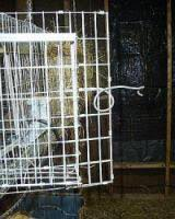 Home Made Rabbit Hutches Construct Wire Rabbit Cage Plans
