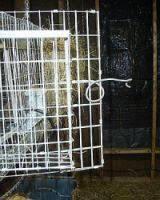 Rabbit Hutch Set Up Construct Wire Rabbit Cage Plans
