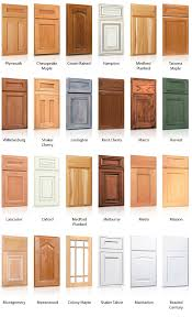 Kitchen Cabinet Door Styles Kitchen Cabinets Kitchens - Style of kitchen cabinets