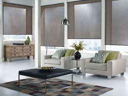 Decorative Window Shades by Decorative Light Filtering Roller Shades Best Home Decor