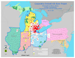 emerald ash borer map tnc global invasive species team page