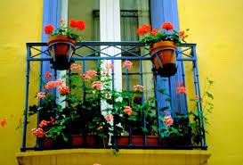blumentopf balkon blumentopf fällt vom balkon wer zahlt wenns schäden gibt blick