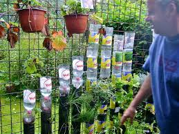 kitchen gardening ideas bottle tower gardening how to start willem cotthem