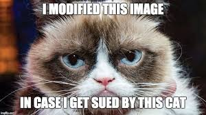 Cat Suit Meme - grumpy cat wins 700 000 in copyright suit lowering the bar