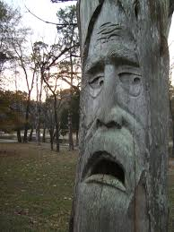 tree face an old mans face carved into a tree at orr park in montavello