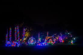 sarasota lights up night with holiday cheer sarasota your
