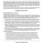 Professional Summary On Resume Professional Summary For Resume Inspiredshares Com