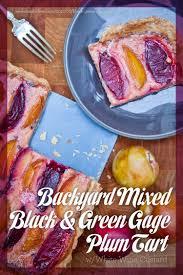 backyard mixed black and green gage plum tart with white wine