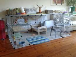 Rabbit Hutch Indoor Large Large Indoor Rabbit Cage Door Targovci Com