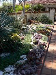 100 backyard cactus garden garden design garden design with