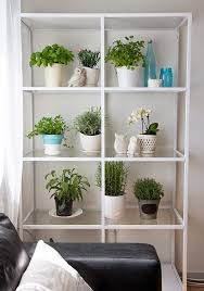 unusual indoor herb garden ideas with white metal storage rack and
