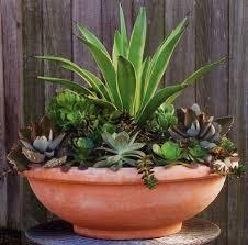 terra cotta low bowl for the home pinterest terra cotta