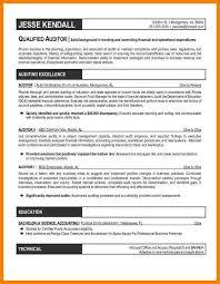 Auditor Resume Sample by 6 Auditor Resume Examples Dialysis Nurse