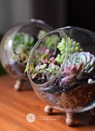 best 20 herb planters ideas on pinterest growing herbs 20 succulents in things best of pinterest plants cacti and