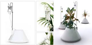 self watering plants interesting self watering house plants cool idea i v plant pot