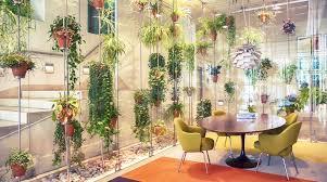 Most Fragrant Indoor Plants The Best Indoor Plants For Australian Offices Lifehacker Australia