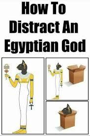 Egyptian Memes - img 0348 jpg