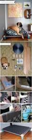 Dog Kennel Flooring Outside by Best 25 Big Dog Kennels Ideas On Pinterest Dog Pools Dog Pond