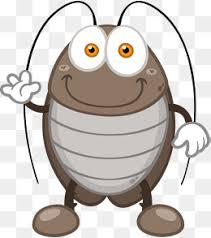 cockroach free png images psd downloads pngtree