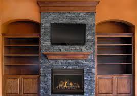 modern wood burning fireplace inserts cpmpublishingcom