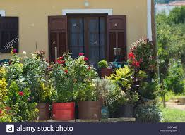 small beautiful house with flowers in front of the windows stock