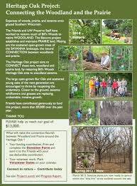 native woodland plants friends projects friends of the lakeshore nature preserve