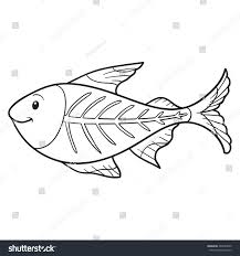 coloring book xray fish stock vector 260594849 shutterstock