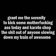 Serenity Prayer Meme - grant me the serenity pardon the bad words but i thought this was