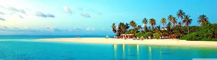 Palm Tree Wallpaper Tropical Beach With Palm Trees Hd Desktop Wallpaper Fullscreen