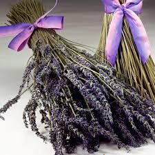 lavender bouquet provence lavender bouquet sonoma lavender