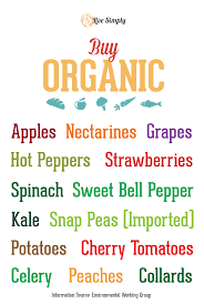 organic grocery shopping list grocery list template