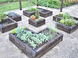 perennial herb garden layout raised herb garden layout home outdoor decoration