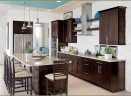 Dark Espresso Kitchen Cabinets by Captivating Model Of Motor In Joss Image Of Mabur Pleasant Yoben
