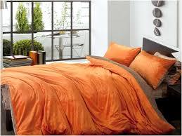 Orange Comforter Brown And Burnt Orange Comforter Sets Home Design U0026 Remodeling Ideas
