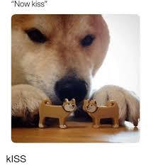 Now Kiss Meme Generator - now kiss kiss meme on me me