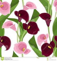 purple calla lilies seamless pattern with pink and purple calla lilies royalty free