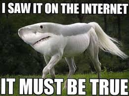 Internet Memes - saw it on the internet meme