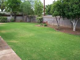 backyard landscape ideas backyard landscape design phoenix astounding phoenix backyard